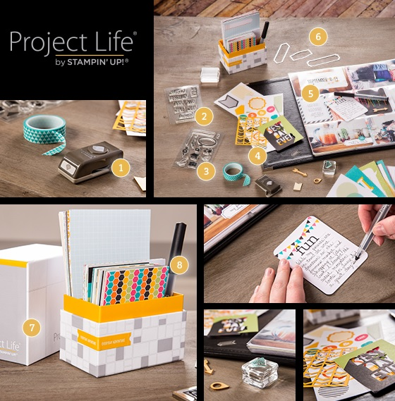 Project Life2