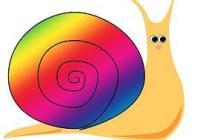 Snail SALE